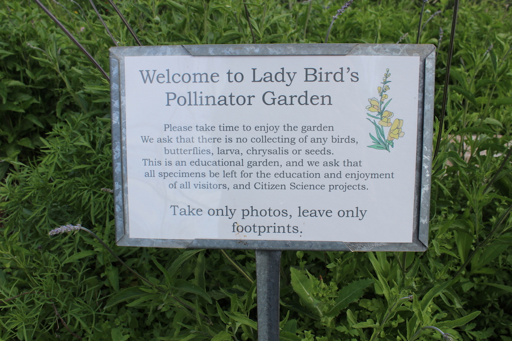 Welcome to Lady Bird's Pollinator Garden in Fredericksburg, Texas